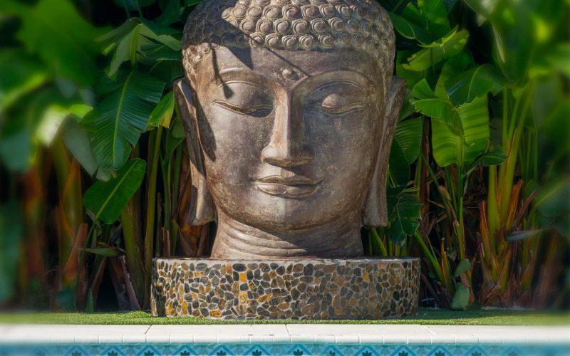 Zen-Pool-Buddha