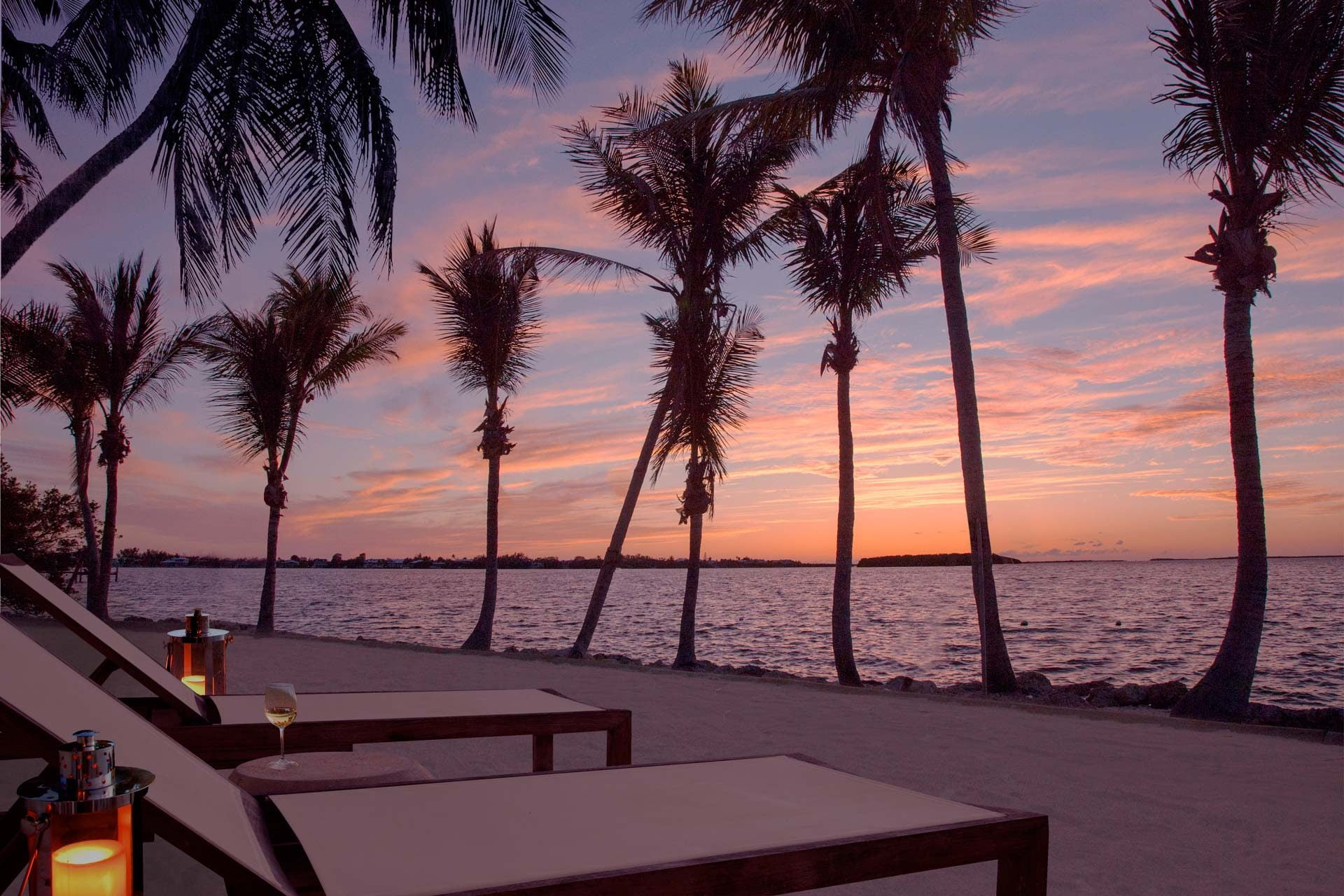 beach sunset with palm trees, reclining chairs and wine