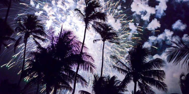 Fireworks-over-Palm-Trees---stock-photo
