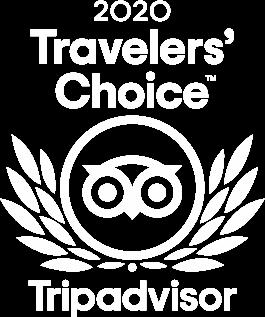 2020 Traveler's Choice Tripadvisor logo
